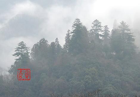 Kirikodachi