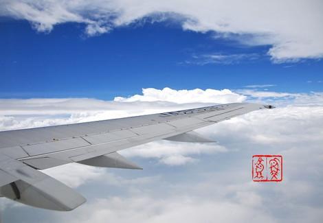 Wing6677
