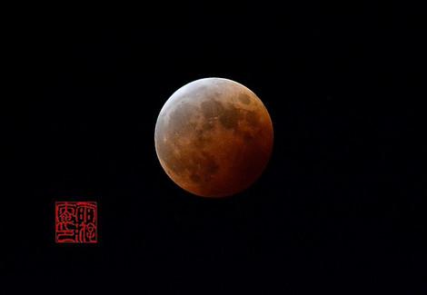 Moon5171141008
