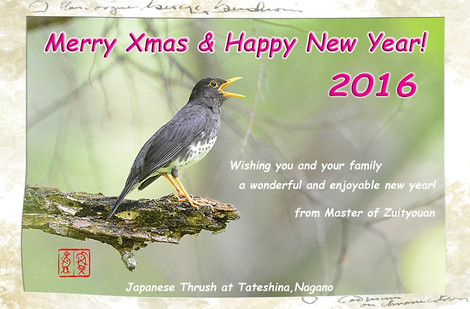 Greetingcard2016
