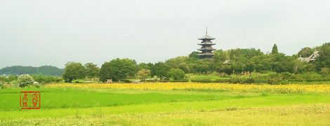 Bitchukokubunnji20170723_083259