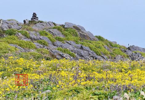 Hegurajima201710118687