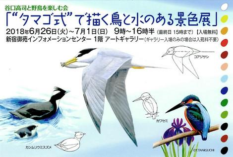 Taniguchisanpostcard