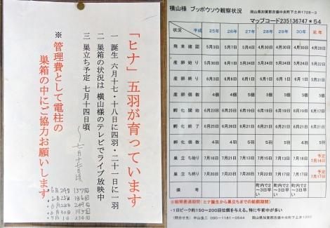 Buppousouyokoyamasama20190705n2735