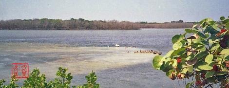 Florida208