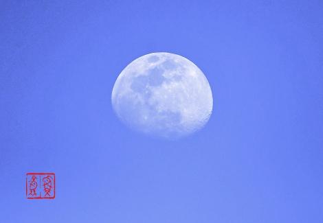 Moon201904177449