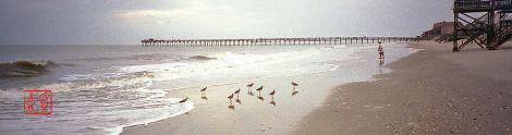 Seashore03