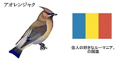 Aorenjyaku