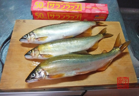 Ochiayu20201014_172456
