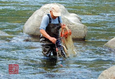 Sashiamiryou20201014n4630